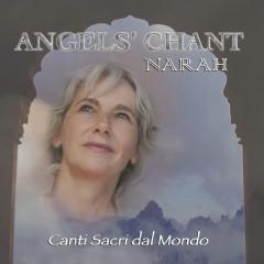 angel2-disk